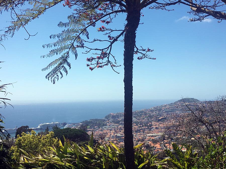 auf das Meer und die Stadt Funchal.