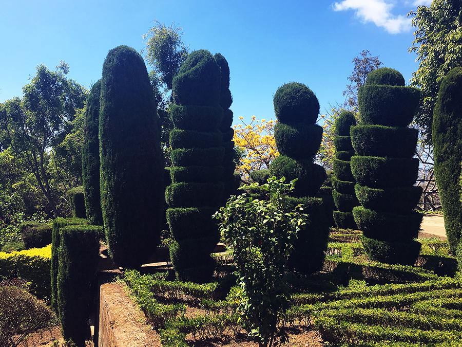 Sehr beeindruckend: Hier haben die Gärtner sich wohl selbst übertroffen!