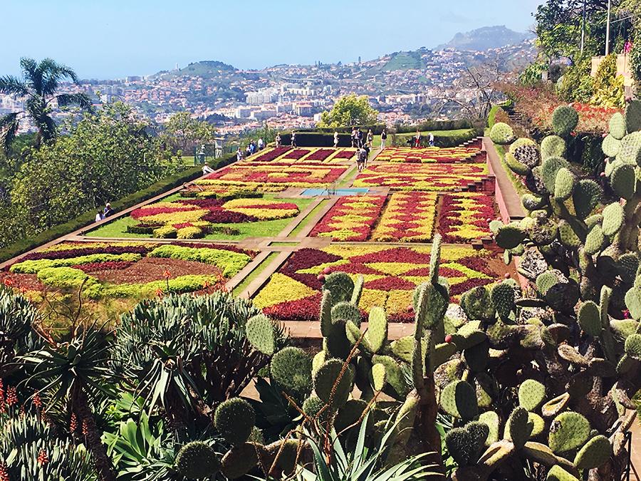 Der berühmte rot-grüne Blumenteppich des Botanischen Gartens...