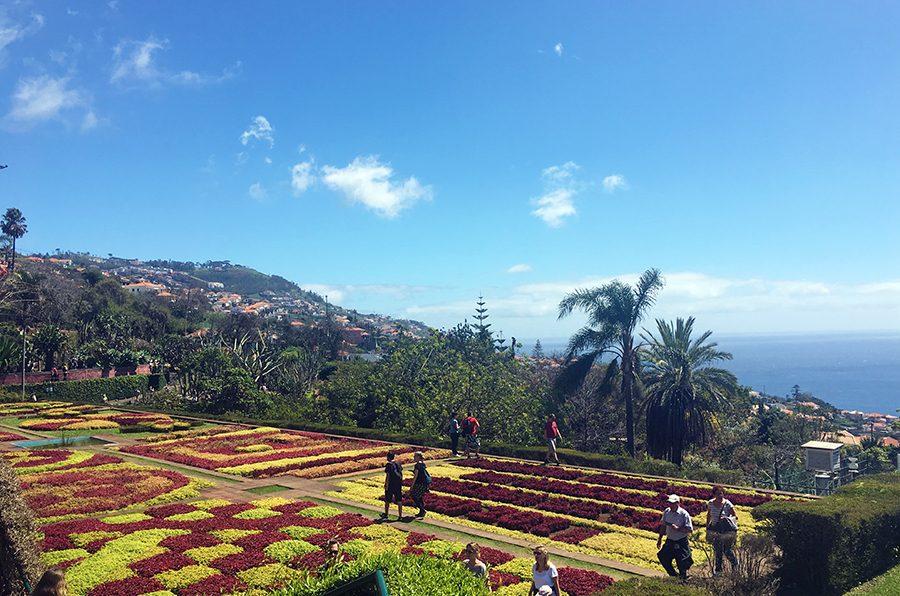 Zu unseren Reiseberichten aus Madeira, Portugal.