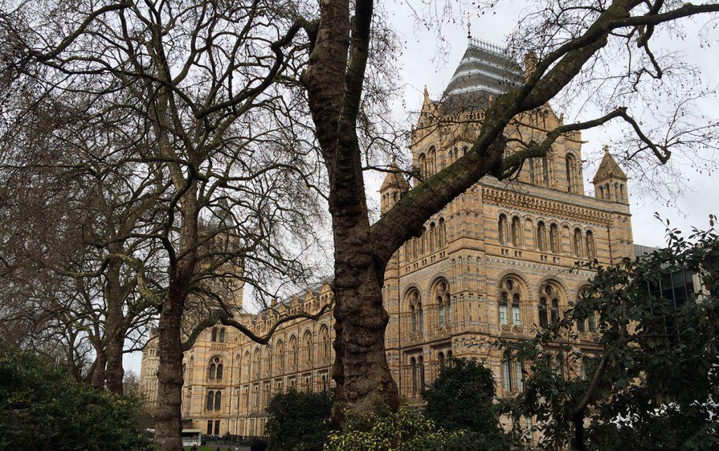 Alleine das Gebäude ist schon mächtig und beeindruckend: Das Natural History Museum in London.