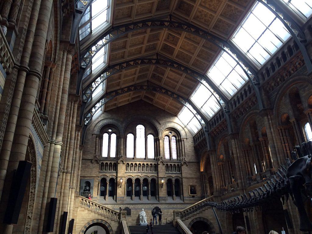 Beeindruckend, gleich von Anfang an: die imposante Eingangshalle des Natural Histroy Museums, inklusive riesigem Dinosaurier-Skelett, von dem hier nur der Schwanz ins Bild ragt.