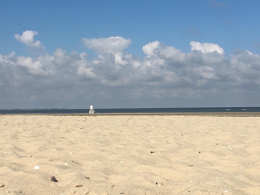 Geschafft, verdiente Pause im Sand. Ganz schön anstrengend, so eine Wattwanderung!