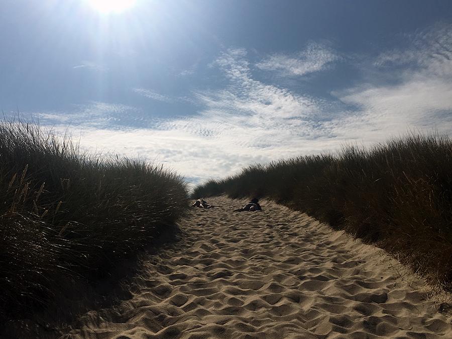 Etwas entkräftet anscheinend. Wobei es natürlich auch einfach Spaß macht, sich, egal, wo man geht und steht, einfach fallen lassen zu können, weil ja überall weicher, warmer Sand ist.