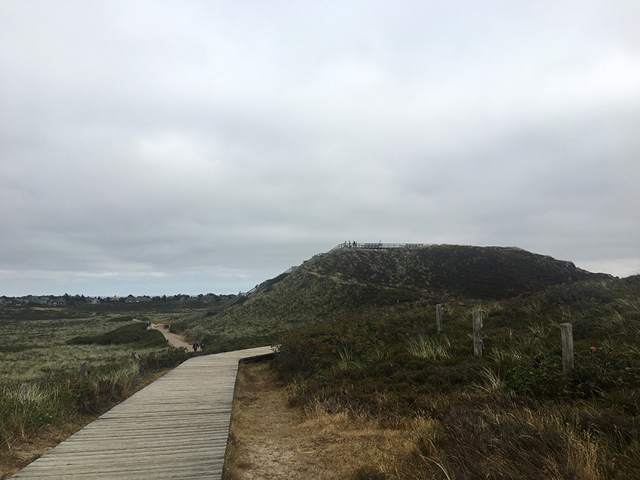 Der Weg zur Uwe Düne, die höchste von ganz Sylt.