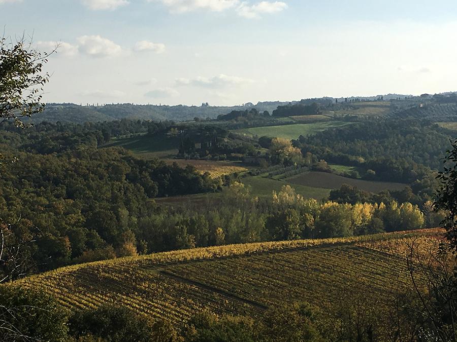Im Herbst in der Toskana kommt öfters noch die Sonne raus und schafft es auch noch auf richtig angenehme Temperaturen.