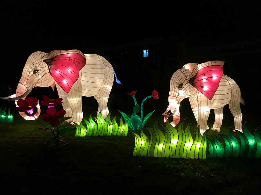 ... natürlich auch supersüße Elefanten....