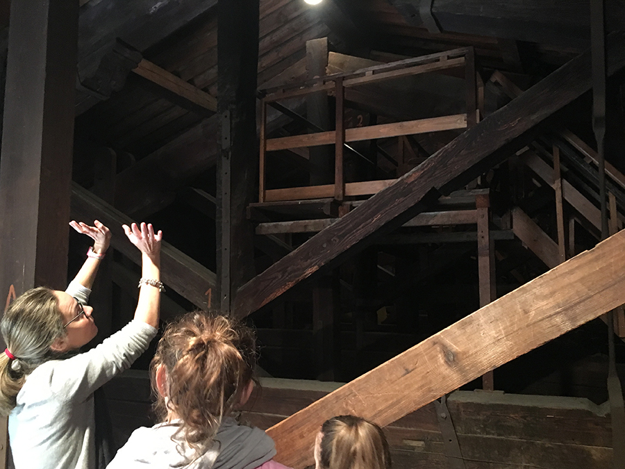 ... bis direkt unter das Dach des Palazzo Vecchio!