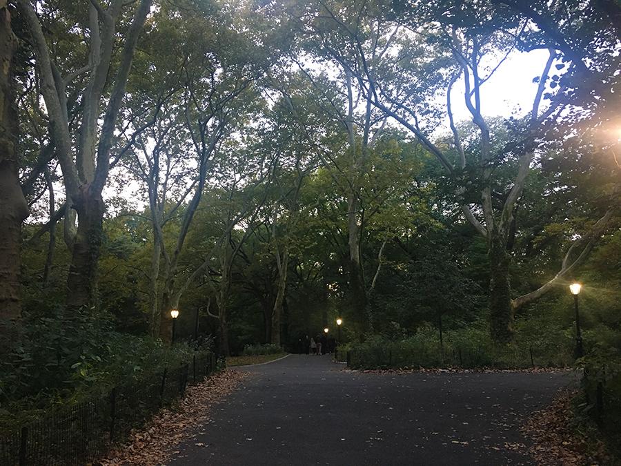 Es beginnt zu dämmern im Central Park.