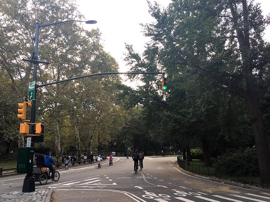 Damit man nicht immer ganz außen herum fahren muss, führen einige (wenige) Straßen durch den Central Park, die die Avenues im Westen und Osten verbinden.