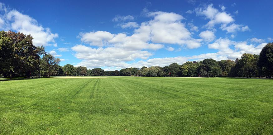 'The Great Meadows', die großen Wiesen heißt - völlig berechtigt - dieser Teil des Central Parks.
