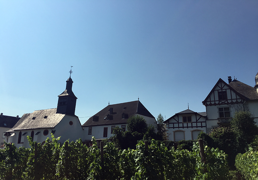 Idylle: Ein typisches Dorf an der Mosel.