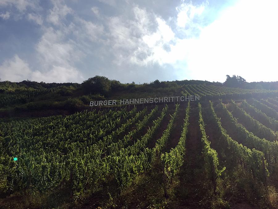 Diese Buchstaben sind riesig! Aber so weiß man immer, wo man ist - und, wo die Trauben für welchen Wein wachsen!