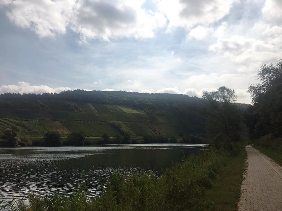 Wir sind froh, dass wir nicht die Abkürzung über den Berg genommen haben und lieber hier gemütlich an der Mosel entlang rollen!