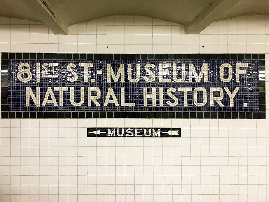 Die Haltestelle der 81st Station am 'Museum Of Natural History'.