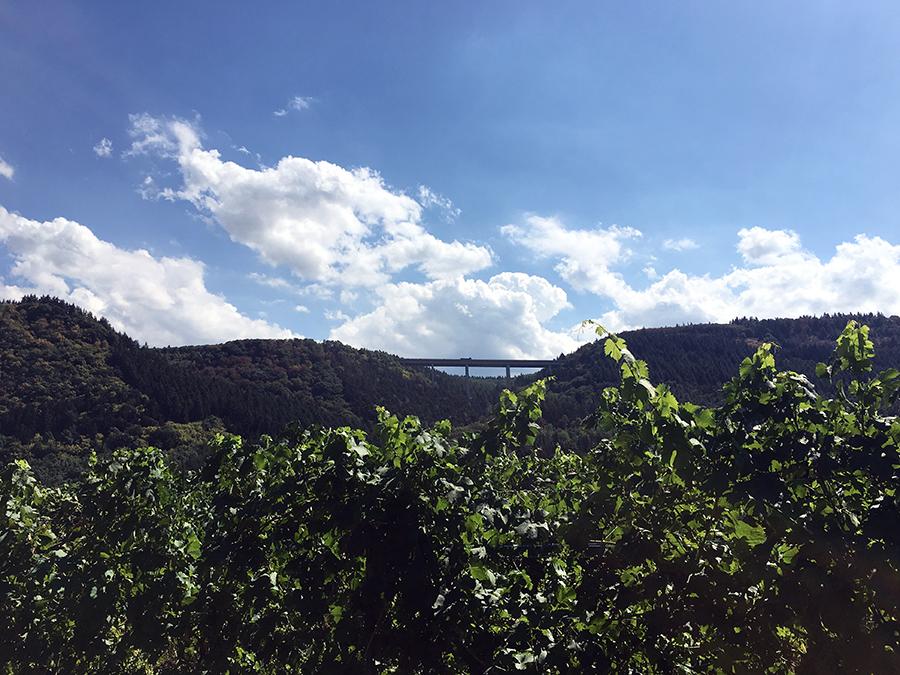 Schwindelerregende Höhe: Eine Talbrücke über das Moseltal.