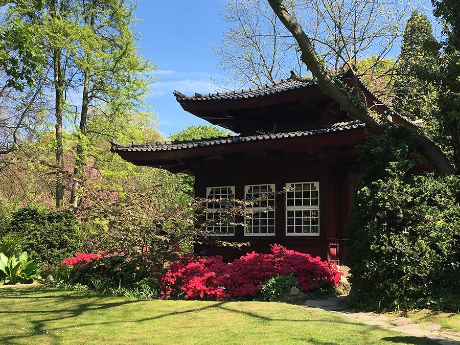 Sogar ein echtes Teehaus steht im japanischen Garten!