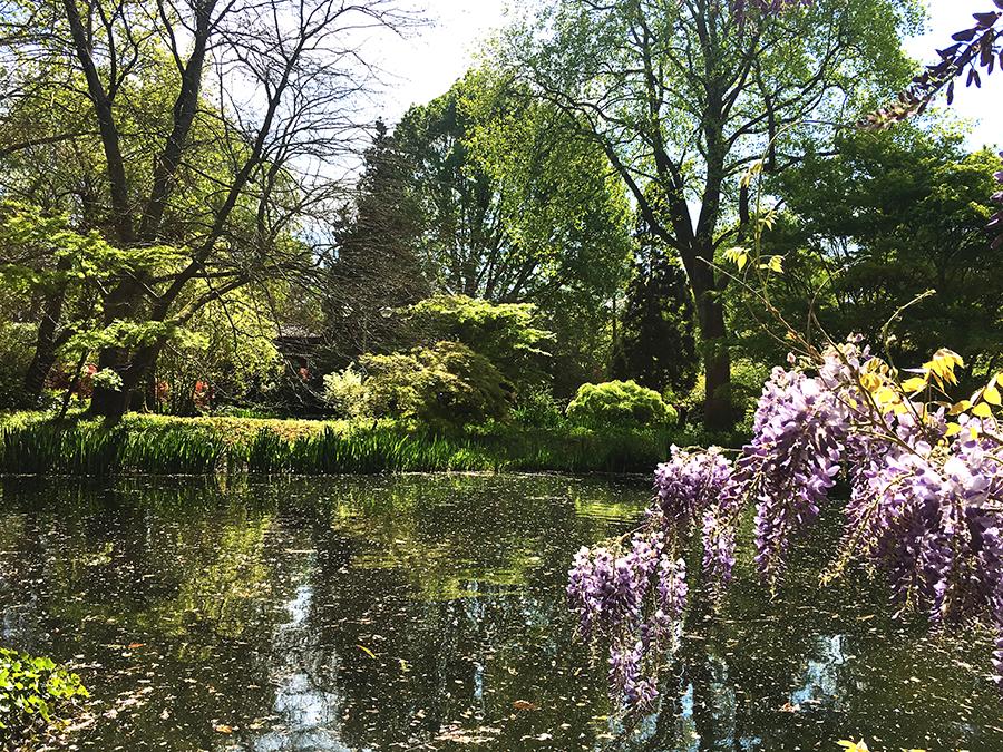Bäume, Büsche, Seen und Blumen allüberall - ist das schön hier!
