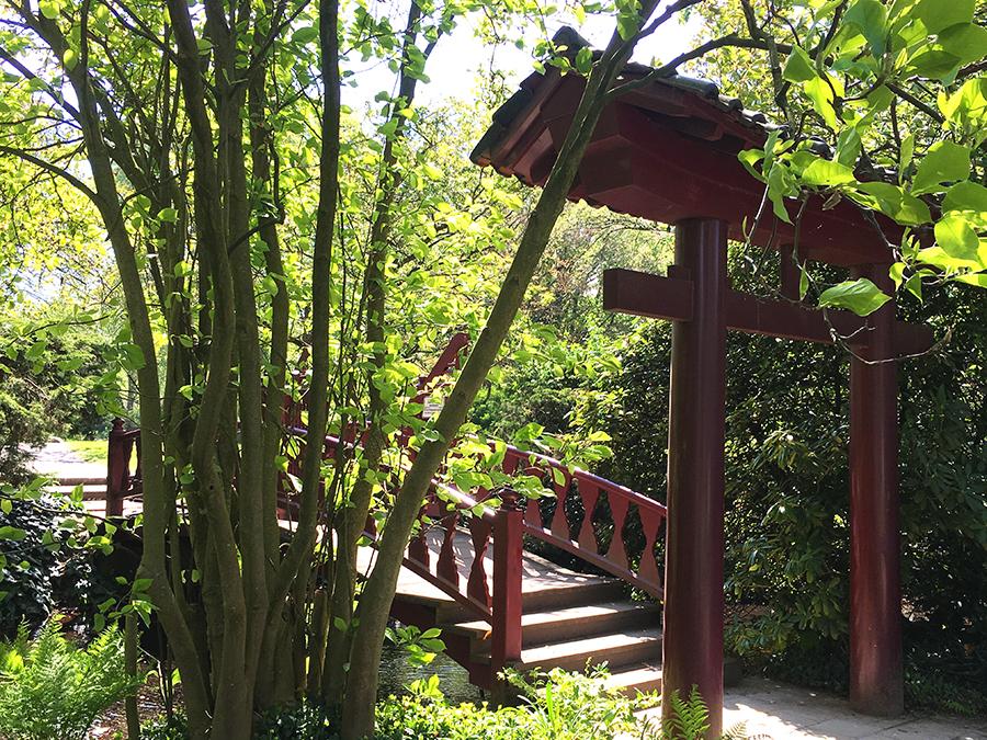 Asiatische Torelemente und Brücken verleihen dem Park sein besonderes Flair.