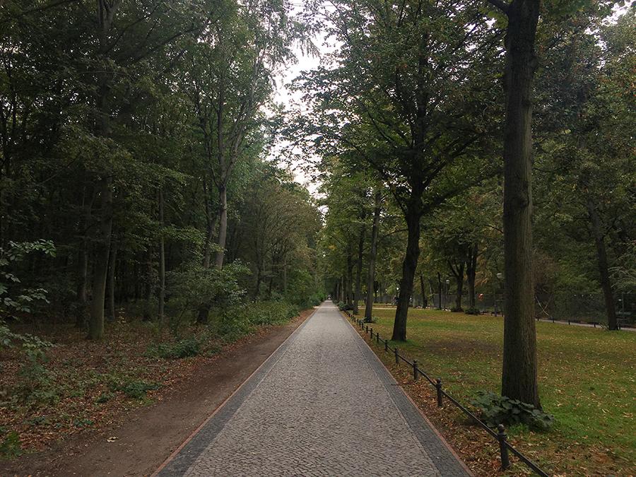 Eine Allee mit Wegen links und rechts im Großen Tiergarten.