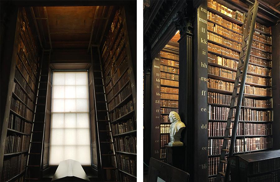 Die Fenster sind mit Lichtschutz verhangen, um die Bücher vor Alterung zu schützen.
