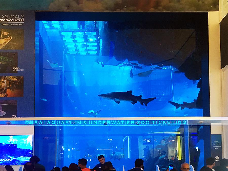 Der Eingangsbereich des Aquariums und Unterwasser-Zoos von vorne.