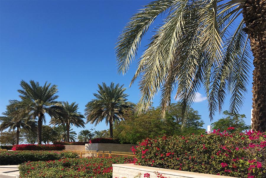Auch das gesamte Gelände rund um die Moschee ist natürlich perfekt gepflegt.