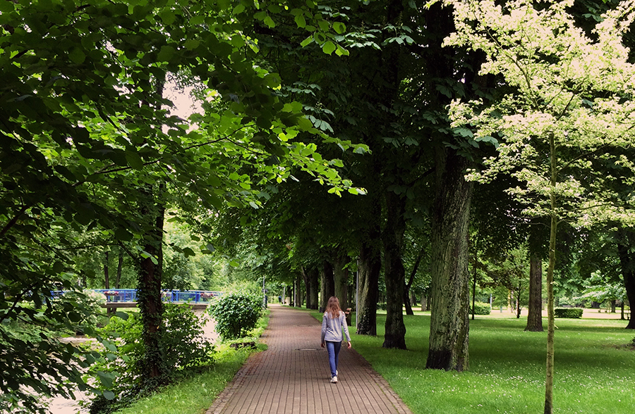 Viel Platz im Kurpark von Bad Krozingen.