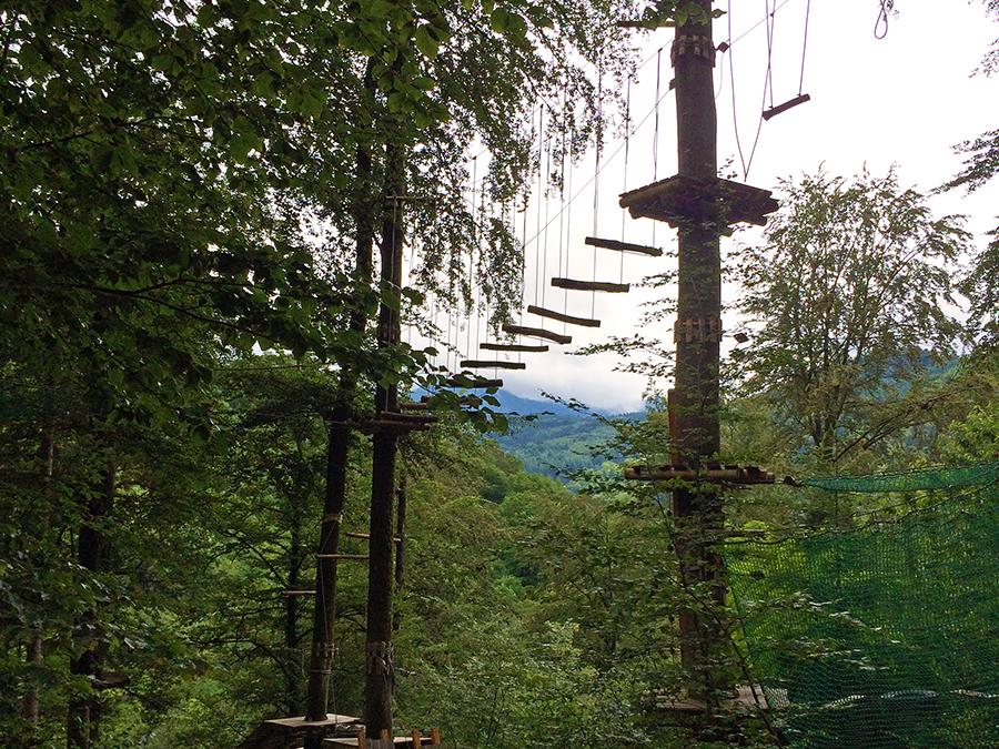 ...für diesen coolen Wald-Parcours.
