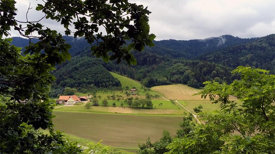 Zu unseren Reiseberichten aus dem Schwarzwald, Deutschland.