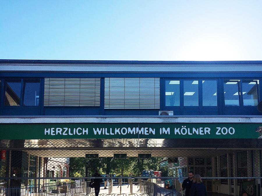 Kölner Zoo Eingang