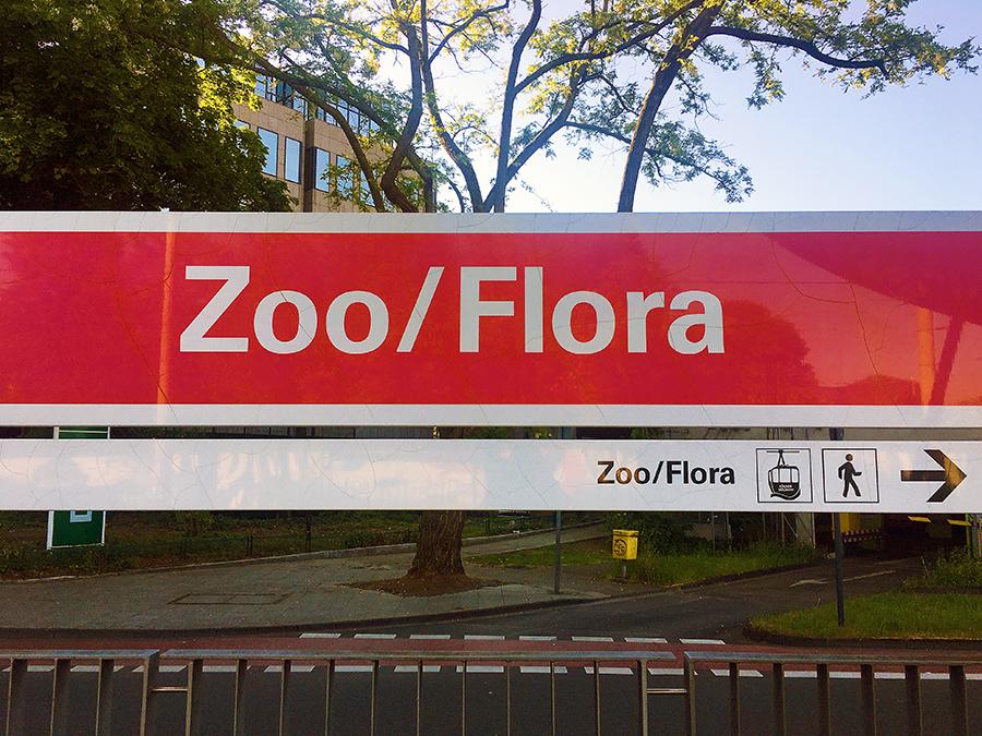 """Die Haltestelle """"Zoo/Flora"""" der Linie 18 liegt genau gegenüber des Eingangs zum Zoo."""