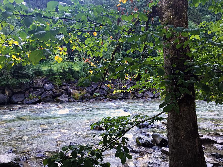 Ein erster Eindruck der Breitach: Hier noch als recht friedliches Flüsschen zwischen niedrigen Uferböschungen.
