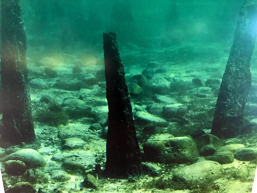 So sehen die Überreste der originalen Pfahlbauten am Grunde des Bodensees aus.