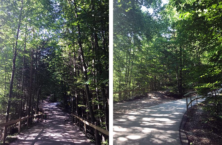 Immer weiter dem Weg durch Wald folgen - durch die vielen Bäumen wieder herrlich schattig, eine riesige Erleichterung im Hochsommer!