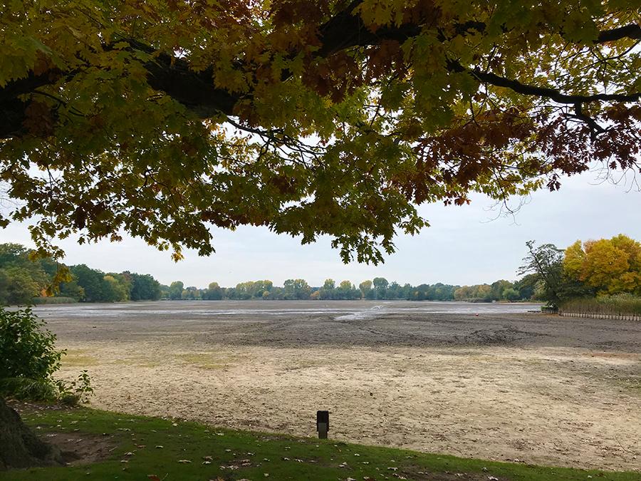 Nach einem langen Sommer wurde das Wasser im künstlich angelegten Dutzendteich zum großen Teil abgelassen.