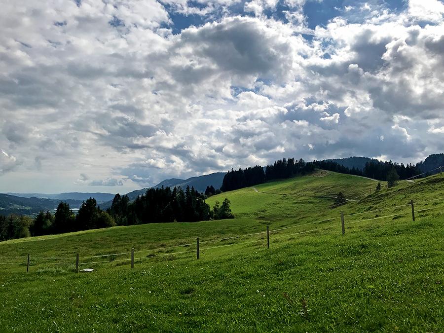 Pure Bergidylle hier oben über tiefgrünen Wiesen...